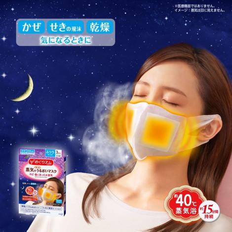 Megrhythm Steam Face Mask