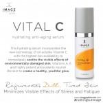 Image skincare Vital C Hydrating Anti Aging Serum