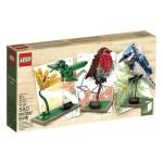 LEGO Ideas Birds set  - 21301