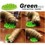 NORTHMATE Green interactive feeder