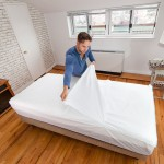 Peelaways Disposable Bed Sheets