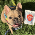 TEEF- DAILY DOG DENTAL CARE