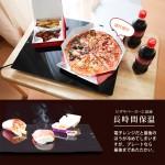 Thanko Food Warmer Plate