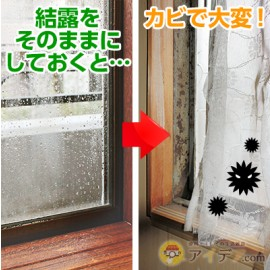 Bio - Mold clean window