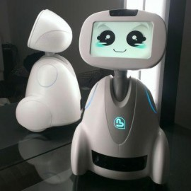 BUDDY - Family's Companion Robot