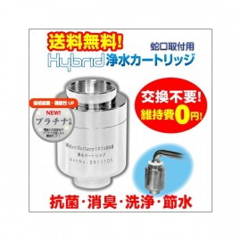 Hybrid water purification cartridge