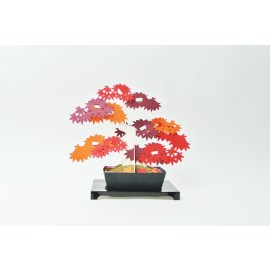 Kami Bonsai