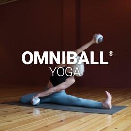 OmniBall