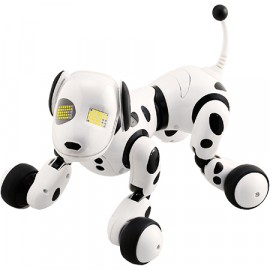 Omnibot Hello - Zoomer