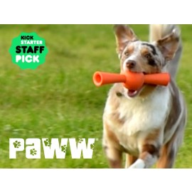 Paww - Smart fetch N treat toys