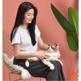 Xiaomi CARNO pet sterilization care comb