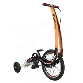 BOWQI Foldable Bike Fitness Sports Riding Bicycle