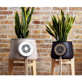 Clairy - Natural Air Purifier