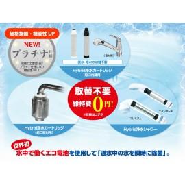 Hybrid water purification cartridge