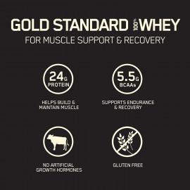 Optimum Nutrition Gold Standard Whey Stick