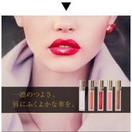 KAKEHIKI Motive Lip Plumper