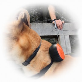 LISHINU RETRACTABLE HANDS FREE DOG LEASH