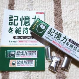LOTTE maintain memory power gum