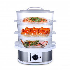 Morphy Richards electric steamer