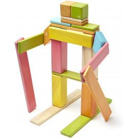 Tegu Magnetic Wood Blocks
